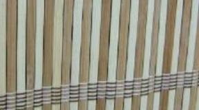 bambus_BC16
