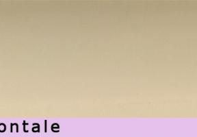 jaluzele orizontale 2419
