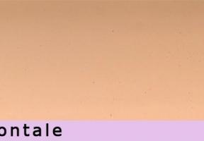 jaluzele orizontale 502