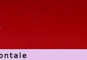 jaluzele orizontale 570