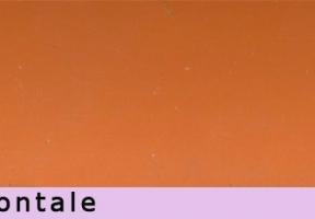 jaluzele orizontale 6019