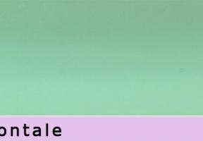 jaluzele orizontale 63