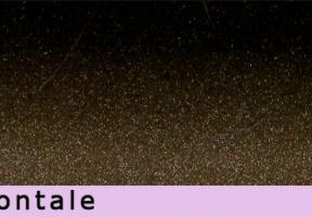 jaluzele orizontale 716