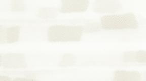 rembrandt_602
