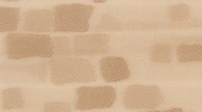 rembrandt_603