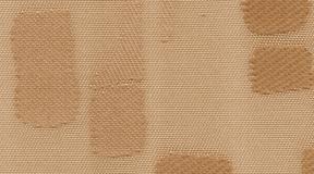 rembrandt_6030