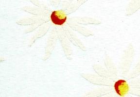rolete textile vangogh_339